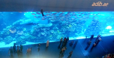What's a mall without an aquarium, amirite?